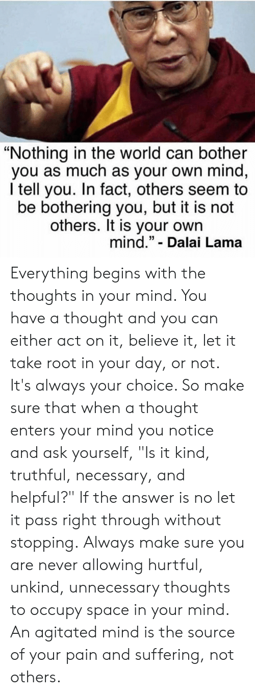 "lama: ""Nothing in the world can bother  you as much as your own mind,  I tell you. In fact, others seem to  be bothering you, but it is not  others. It is your own  mind."" - Dalai Lama Everything begins with the thoughts in your mind. You have a thought and you can either act on it, believe it, let it take root in your day, or not. It's always your choice. So make sure that when a thought enters your mind you notice and ask yourself, ""Is it kind, truthful, necessary, and helpful?"" If the answer is no let it pass right through without stopping. Always make sure you are never allowing hurtful, unkind, unnecessary thoughts to occupy space in your mind. An agitated mind is the source of your pain and suffering, not others."