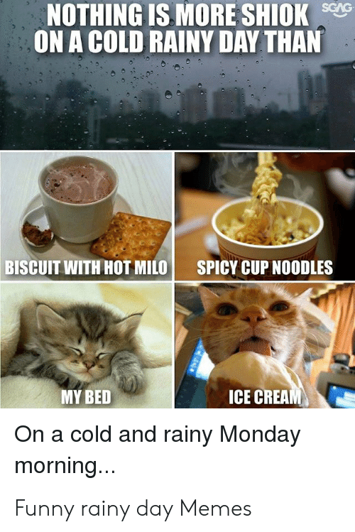25 Best Memes About Funny Rainy Day Memes Funny Rainy Day Memes