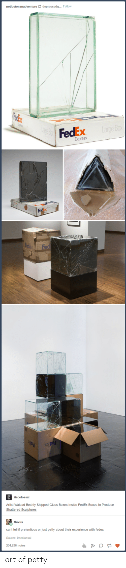 Petty, Pretentious, and Express: notlostonanadventure depressedg... Follow  FedEx  Express  Artist Walead Beshty Shipped Glass Boxes Inside FedEx Boxes to Produce  Shattered Sculptures  thivus  cant tell if pretentious or just petty about their experience with fedex  Source: itscolossal  204,236 notes art of petty