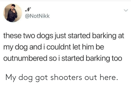 Shooters: @NotNikk  these two dogs just started barking at  my dog and i couldnt let him be  outnumbered so i started barking too My dog got shooters out here.