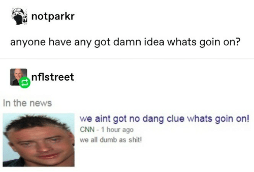 cnn.com, Dumb, and News: notparkr  anyone have any got damn idea whats goin on?  nflstreet  In the news  we aint got no dang clue whats goin on!  CNN-1 hour ago  we all dumb as shit