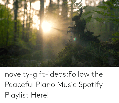 Music: novelty-gift-ideas:Follow the Peaceful Piano Music Spotify Playlist Here!