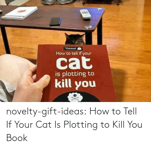 ideas: novelty-gift-ideas:  How to Tell If Your Cat Is Plotting to Kill You Book