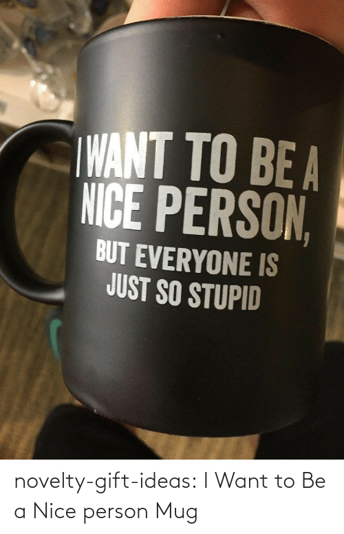 ideas: novelty-gift-ideas:  I Want to Be a Nice person Mug