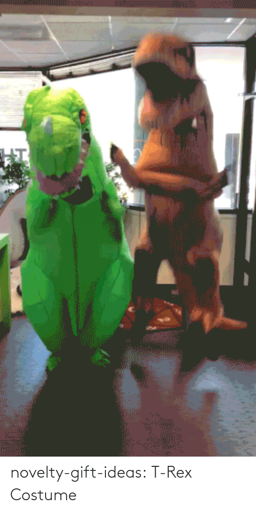 ideas: novelty-gift-ideas:  T-Rex Costume