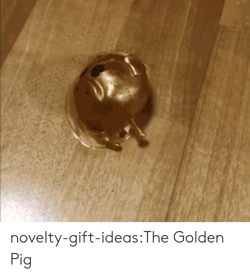 relief: novelty-gift-ideas:The Golden Pig