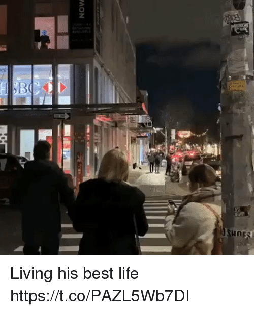 Life, Best, and Living: NOW Living his best life https://t.co/PAZL5Wb7DI