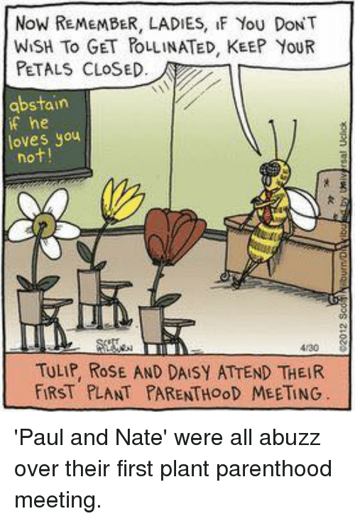 Memes, Parenthood, and Rose: NoW REMEMBER, LADIES, IF You DONT  WISH To GET POLLINATED, KEEP YouR  PETALS CLOSED.  abstain  if he  loves you  not!  4/30  TULIP, ROSE AND DAISY ATTEND THEIR  FİRST PLANT PARENTHOOD MEETING 'Paul and Nate' were all abuzz over their first plant parenthood meeting.