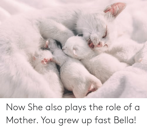 bella: Now She also plays the role of a Mother. You grew up fast Bella!