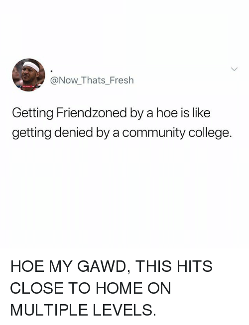 College, Community, and Fresh: @Now_Thats_Fresh  Getting Friendzoned by a hoe is like  getting denied by a community college. HOE MY GAWD, THIS HITS CLOSE TO HOME ON MULTIPLE LEVELS.