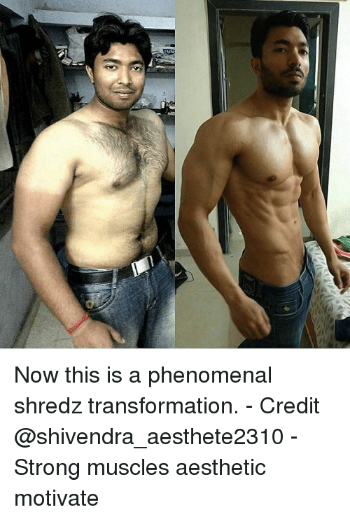 Memes, Phenomenal, and Aesthetic: Now this is a phenomenal shredz transformation. - Credit @shivendra_aesthete2310 - Strong muscles aesthetic motivate