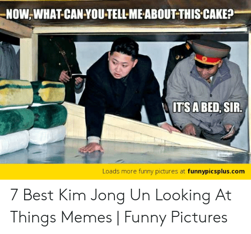 Kim Jong Un Looking At Things: NOW,WHAT CAN YOU-TELL-ME ABOUTTHIS CAKE?  TSA BED, SIR  Loads more funny pictures at funnypicsplus.conm 7 Best Kim Jong Un Looking At Things Memes | Funny Pictures