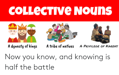 knowing: Now you know, and knowing is half the battle