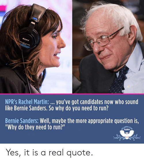 """Bernie Sanders, Martin, and Politics: NPR's Rachel Martin: you've got candidates now who sound  like Bernie Sanders. So why do you need to run?  Bernie Sanders: Well, maybe the more appropriate question is,  """"Why do they need to run?""""  NERS Yes, it is a real quote."""