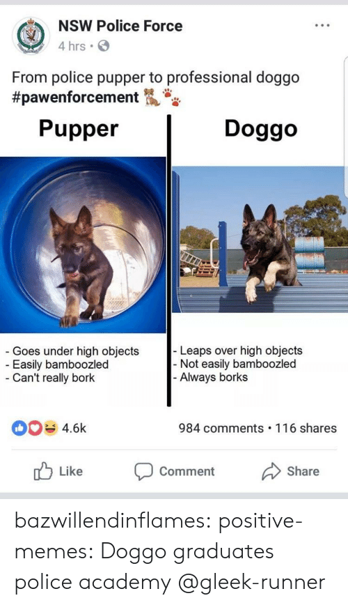 Borks: NSW Police Force  4 hrs  From police pupper to professional doggo  #pawenforcement  Pupper  Doggo  Goes under high objects  Easily bamboozled  Can't really bork  Leaps over high objects  Not easily bamboozled  Always borks  4.6k  984 comments 116 shares  Like Comment Share bazwillendinflames:  positive-memes:  Doggo graduates police academy  @gleek-runner