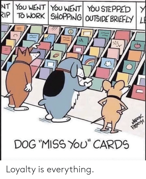 "Shopping, Work, and Dog: NT YoU WENT YoU WENT YOU STEPPED Y  RIP TO WORK SHOPPING OUTSIDE BRIEFLY LE  MARK  DOG ""MISS YOU"" CARDS  FARI Loyalty is everything."