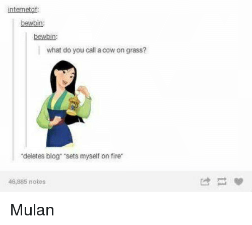 "Memes, Mulan, and 🤖: nternetof:  bewbin:  wbi  what do you call a cow on grass?  ""deletes blog 'sets myself on fire  48,885 notes Mulan"
