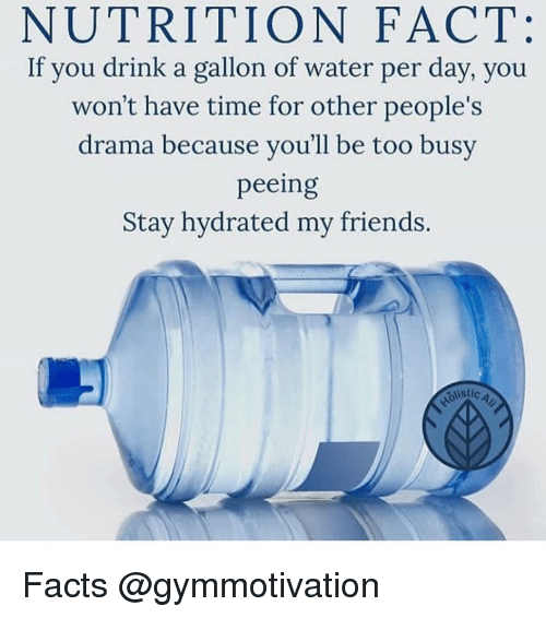 Facts, Friends, and Memes: NUTRITION FACT:  If you drink a gallon of water per day, you  won't have time for other people's  drama because you'll be too busy  peeing  Stay hydrated my friends.  stic  istic Facts @gymmotivation