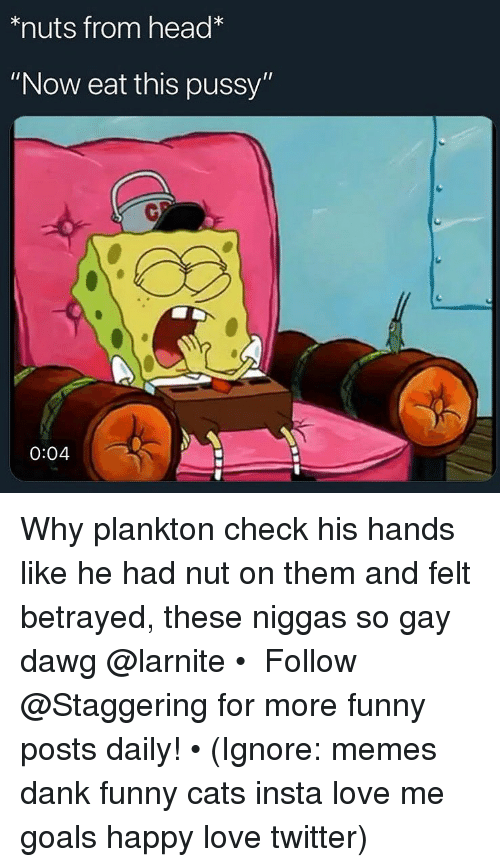 "Cats, Dank, and Funny: *nuts from head*  ""Now eat this pussy""  0  0:04 Why plankton check his hands like he had nut on them and felt betrayed, these niggas so gay dawg @larnite • ➫➫➫ Follow @Staggering for more funny posts daily! • (Ignore: memes dank funny cats insta love me goals happy love twitter)"