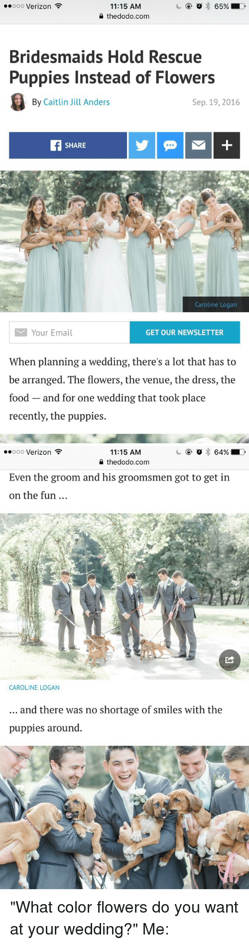 """Groomsmen: o 65%  LD  ooooo Verizon  11:15 AM  the dodo.com  Bridesmaids Hold Rescue  Puppies Instead of Flowers  By Caitlin Jill Anders  Sep. 19, 2016  SHARE  Caroline Logan  M Your Email  GET OUR NEWSLETTER  When planning a wedding, there's a lot that has to  be arranged. The flowers, the venue, the dress, the  food and for one wedding that took place  recently, the puppies.   64% LD  ooooo Verizon  11:15 AM  the dodo.com  Even the groom and his groomsmen got to get in  on the fun  CAROLINE LOGAN  and there was no shortage of smiles with the  puppies around """"What color flowers do you want at your wedding?"""" Me:"""