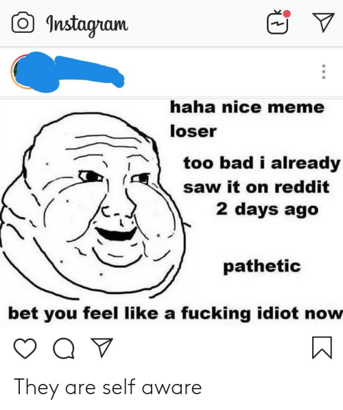Bad, Fucking, and Instagram: O Instagram  haha nice meme  loser  too bad i already  saw it on reddit  2 days ago  pathetic  bet you feel like a fucking idiot now They are self aware
