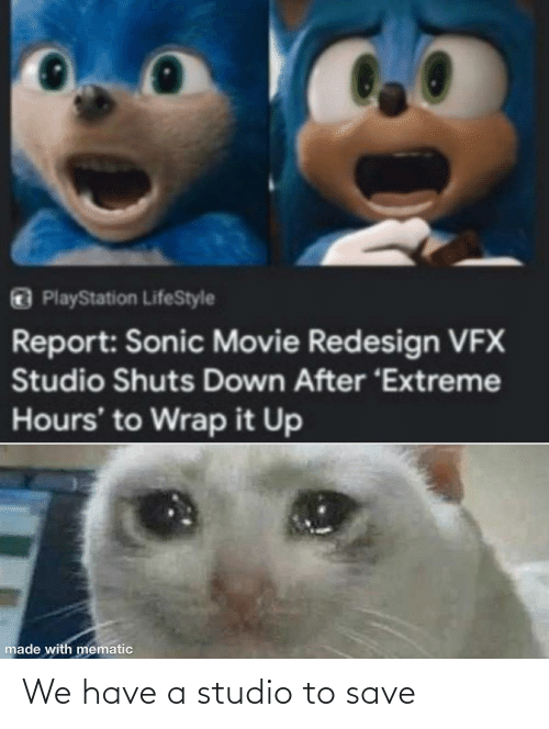 PlayStation, Lifestyle, and Movie: O PlayStation LifeStyle  Report: Sonic Movie Redesign VFX  Studio Shuts Down After 'Extreme  Hours' to Wrap it Up  made with mematic We have a studio to save