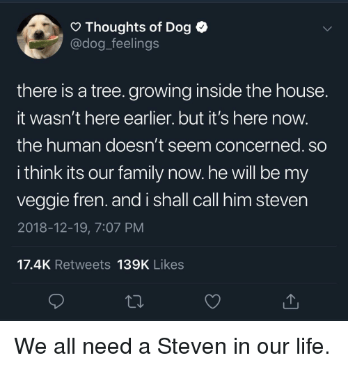Its Here: O Thoughts of Dog <  @dog_feelings  there is a tree. growing inside the house  It wasn't here earlier. but it's here now  the human doesn't seem concerned. so  i think its our family now. he will be my  veggie fren. and i shall call him steven  2018-12-19, 7:07 PM  17.4K Retweets 139K Likes We all need a Steven in our life.
