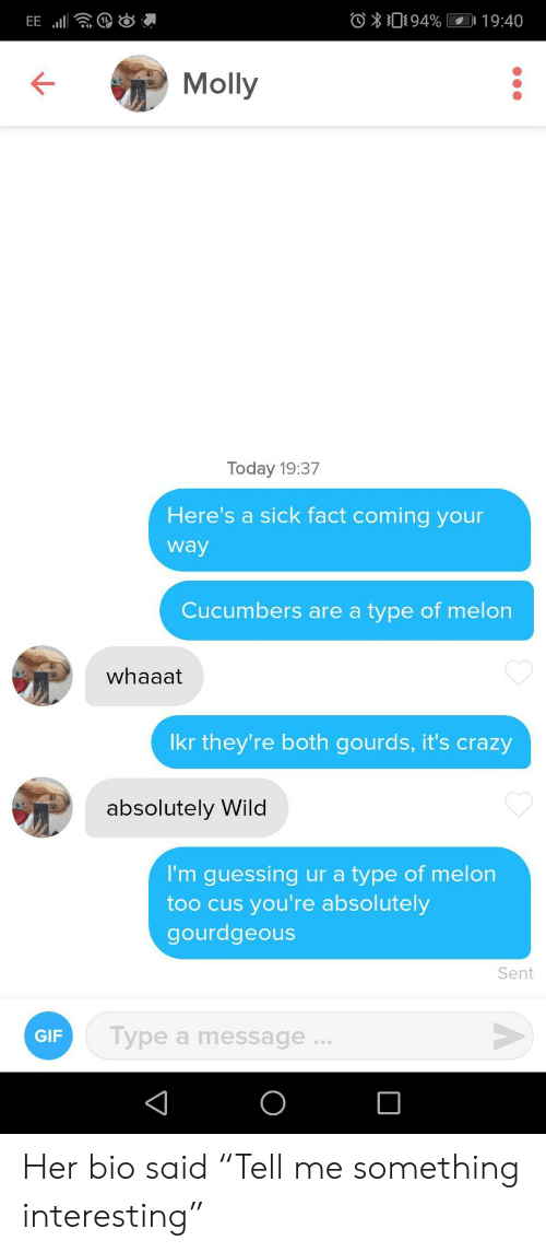 "Crazy, Gif, and Molly: O094%  19:40  EE  Molly  Today 19:37  Here's a sick fact coming your  way  Cucumbers are a type of melon  whaaat  Ikr they're both gourds, it's crazy  absolutely Wild  I'm guessing ur a type of melon  too cus you're absolutely  gourdgeous  Sent  Type a message...  GIF  O Her bio said ""Tell me something interesting"""