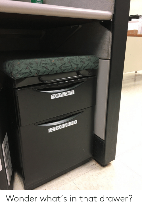 Wonder, Secret, and Top: Oastre  TOP SECRET  BOTTOM SECRET Wonder what's in that drawer?