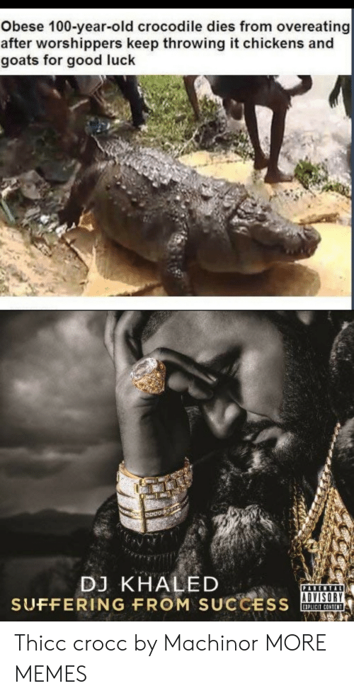 Anaconda, Dank, and DJ Khaled: Obese 100-year-old crocodile dies from overeating  after worshippers keep throwing it chickens and  goats for good luck  Odos  DJ KHALED  SUFFERING FROM SUCCSOA  ADVISORY  IPLICIT CONTENT Thicc crocc by Machinor MORE MEMES