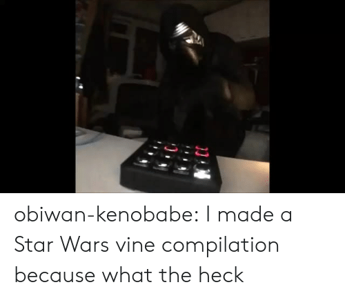 Vine Compilation: obiwan-kenobabe: I made a Star Wars vine compilation because what the heck