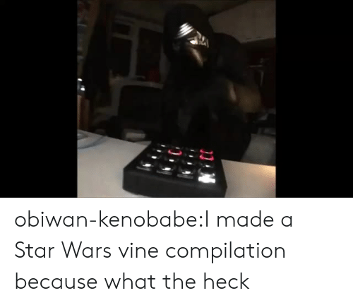 Vine Compilation: obiwan-kenobabe:I made a Star Wars vine compilation because what the heck