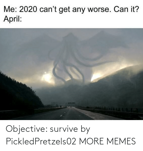 Survive: Objective: survive by PickledPretzels02 MORE MEMES