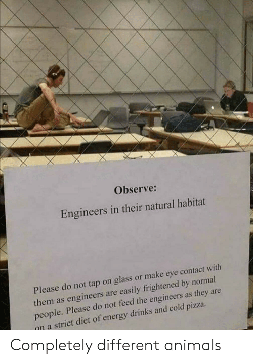 Please Do Not: Observe:  Engineers in their natural habitat  Please do not tap on glass or make eye contact with  them as engineers are easily frightened by normal  people. Please do not feed the engineers as they are  on a strict diet of energy drinks and cold pizza Completely different animals