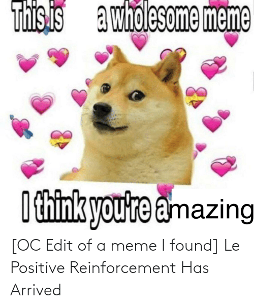 Reinforcement: [OC Edit of a meme I found] Le Positive Reinforcement Has Arrived