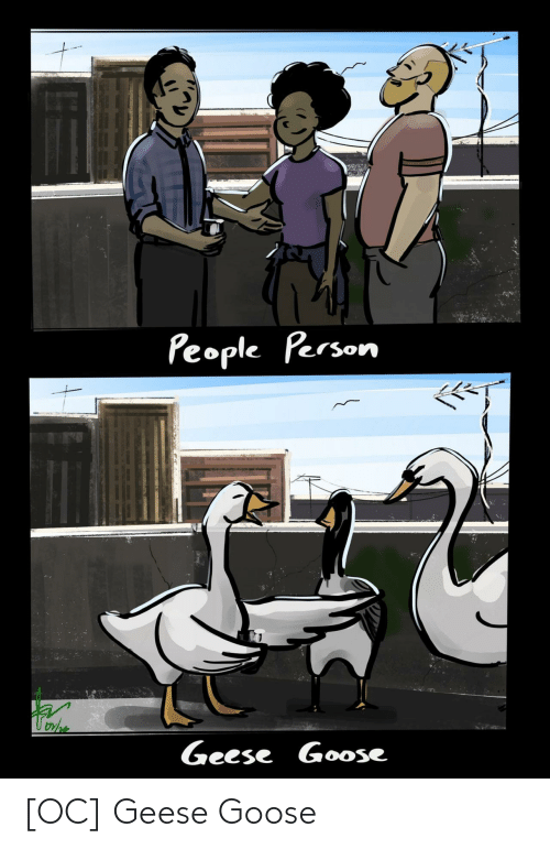 goose: [OC] Geese Goose