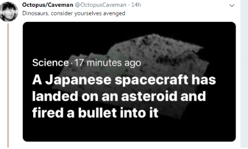 Bullet: Octopus/Caveman @OctopusCaveman 14h  Dinosaurs, consider yourselves avenged  Science 17 minutes ago  A Japanese spacecraft has  landed on an asteroid and  fired a bullet into it