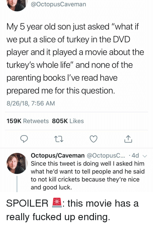 "Books, Funny, and Life: @OctopusCaveman  My 5 year old son just asked ""what if  we put a slice of turkey in the DVD  player and it played a movie about the  turkey's whole life"" and none of the  parenting books l've read have  prepared me for this question  8/26/18, 7:56 AM  159K Retweets 805K Likes  Octopus/Caveman @octopusC 4d  Since this tweet is doing well I asked him  what he'd want to tell people and he said  to not kill crickets because they're nice  and good luck. SPOILER 🚨: this movie has a really fucked up ending."