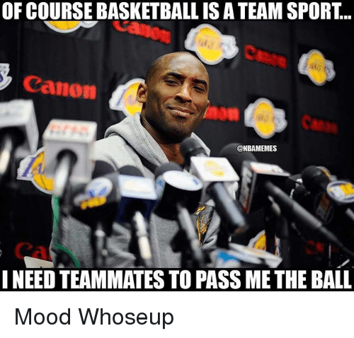 Passe: OF COURSE BASKETBALL IS A TEAM SPORT...  Canon  @NBAMEMES  NEED TEAMMATES TO PASS ME THE BALL Mood Whoseup