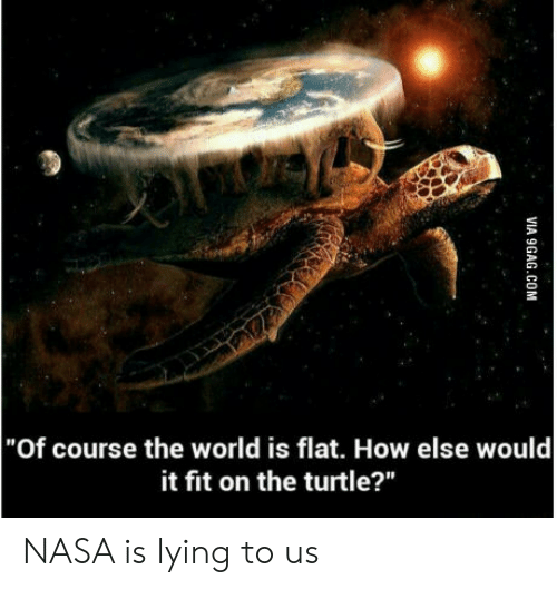"""It Fit: """"Of course the world is flat. How else would  it fit on the turtle?"""" NASA is lying to us"""