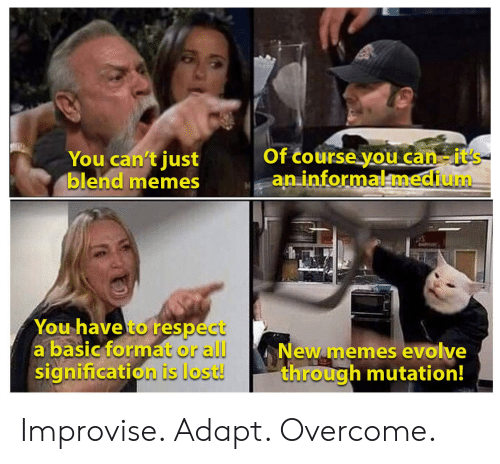 Memes, Respect, and Lost: Of course you can-it's  an informalmedium  You can't just  blend memes  You have to respect  a basic format or all  signification is lost!  New memes evolve  through mutation! Improvise. Adapt. Overcome.