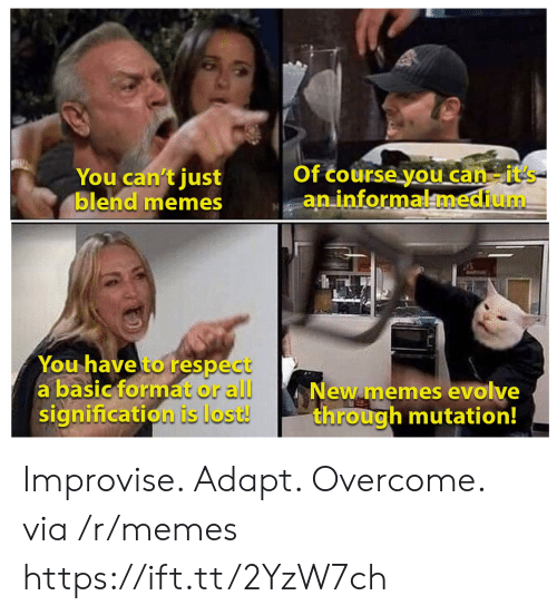 Overcome: Of course you can-it's  aninformalmedium  You can't just  blend memes  You have to respect  a basic format or all  signification is lost!  New memes evolve  through mutation! Improvise. Adapt. Overcome. via /r/memes https://ift.tt/2YzW7ch