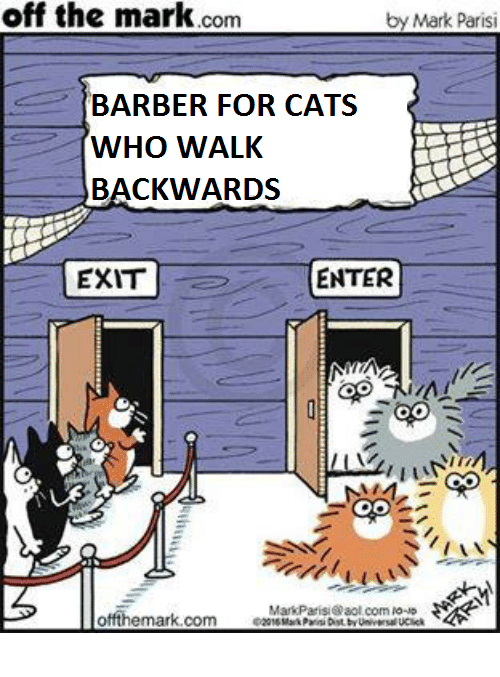 aol.com: off  the  mark.com  by Mark Parisi  BARBER FOR CATS  BACKWARDS  EXIT  ENTER  MarkParisi@aol com io-  offthemark.comMak Pari Dst by Unic