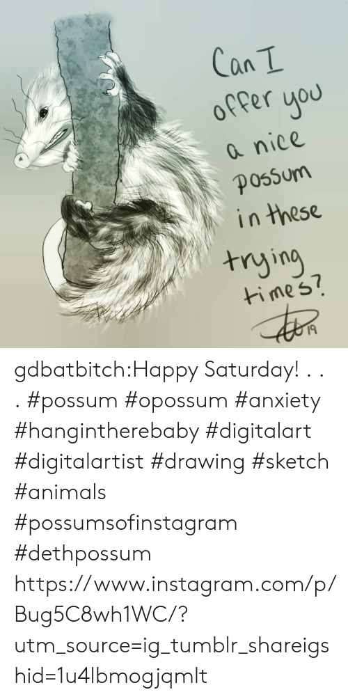 Animals, Instagram, and Tumblr: offer uou  a nice  in these  nying  ti mes7  I9 gdbatbitch:Happy Saturday!  . . . #possum #opossum #anxiety #hangintherebaby #digitalart #digitalartist #drawing #sketch #animals #possumsofinstagram #dethpossum https://www.instagram.com/p/Bug5C8wh1WC/?utm_source=ig_tumblr_shareigshid=1u4lbmogjqmlt