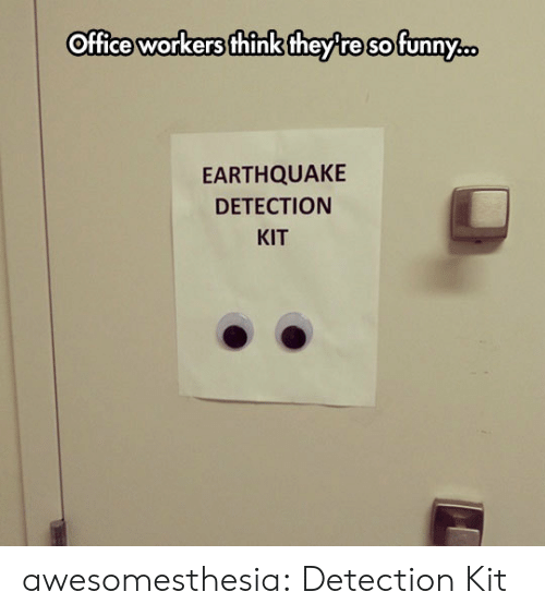 Earthquake: Office workers think they re sofunny.  EARTHQUAKE  DETECTION  KIT awesomesthesia:  Detection Kit