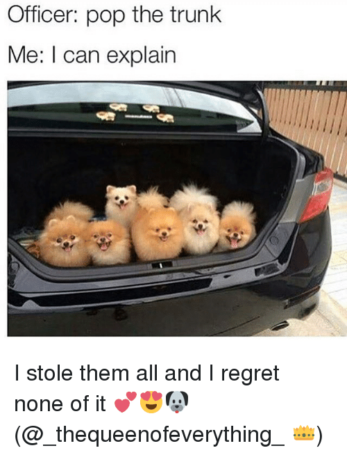 Pop The Trunk: Officer: pop the trunk  Me: I can explain I stole them all and I regret none of it 💕😍🐶(@_thequeenofeverything_ 👑)