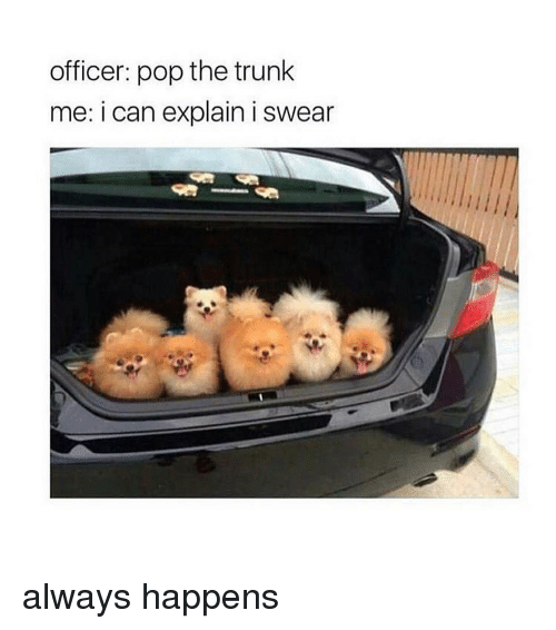 Pop The Trunk: officer: pop the trunk  me: i can explain i swear always happens
