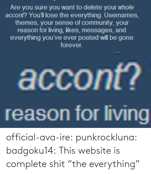"website: official-ava-ire: punkrockluna:  badgoku14:  This website is complete shit  ""the everything"""