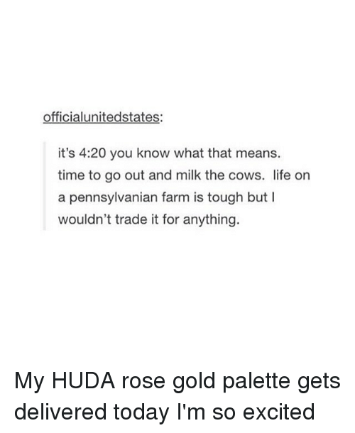 4:20, Memes, and Excite: officialunitedstates:  it's 4:20 you know what that means.  time to go out and milk the cows. life on  a pennsylvanian farm is tough but l  wouldn't trade it for anything. My HUDA rose gold palette gets delivered today I'm so excited