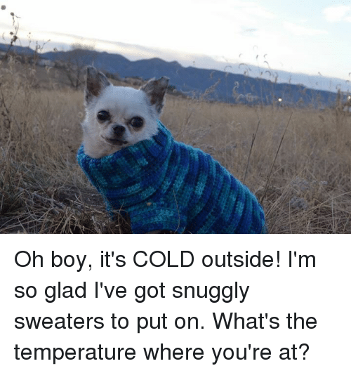 Whats The Temperature: Oh boy, it's COLD outside!  I'm so glad I've got snuggly sweaters to put on.  What's the temperature where you're at?